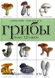 Грибы. 120 видов
